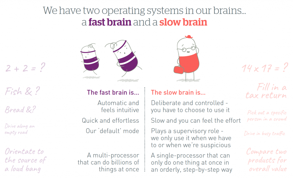 Fast Brain and Slow Brain